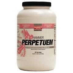 Hammer Nutrition牌Perpetuem极限耐力运动饮料 草莓香草味 2208克 32次用量图片